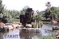エジプトの穀倉地帯を流れるバハル・ユーセフの運河/ファイユーム