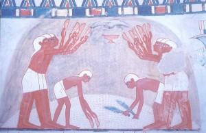 ナクト墓の壁画/ルクソール西岸